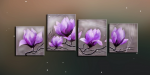 Цветы 51-55
