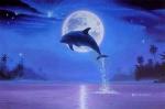 Дельфины и подводный мир