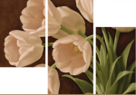 Белые тюльпаны 12-22