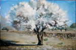 Белое дерево 51-152